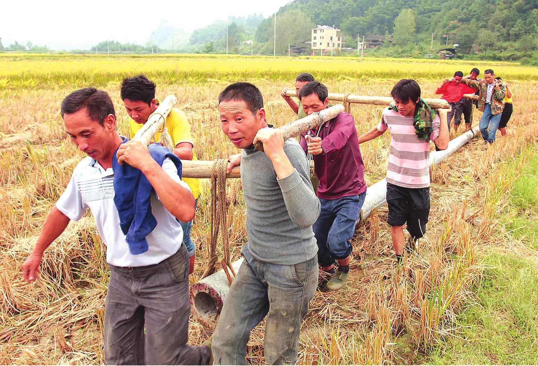 绥宁县城人口_湖南省杂交水稻机械化制种技术推广会绥宁举行(3)